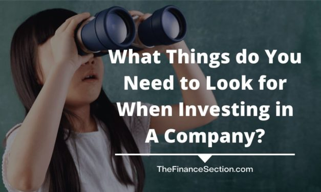 What Things do You Need to Look for When Investing in A Company?
